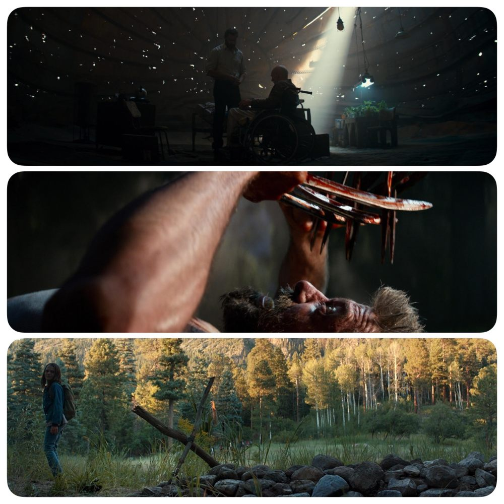 Logan 02