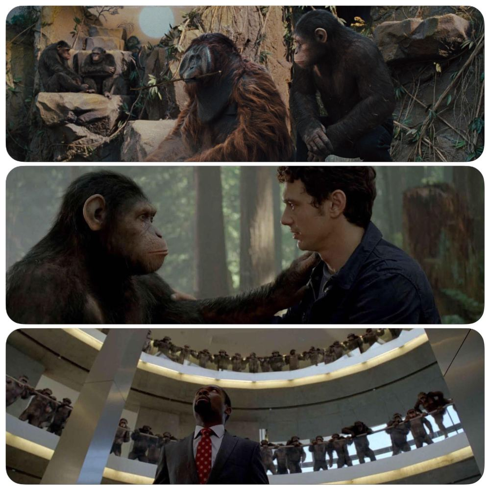 Rise of the Planet of the Apes 02
